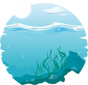 4 komponensű alga komplex a Wellstar-tól, az Imune alga kapszula